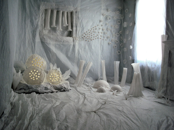 erwan corre expo photos usa chine tunisie mexique france brest utilisation des. Black Bedroom Furniture Sets. Home Design Ideas