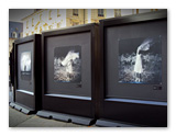 Exposition photo de Corinne Mercadier - Place de la Mairie - Septembre 2013 - Photo 3